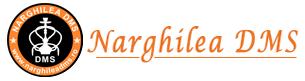 Naghilea DMS
